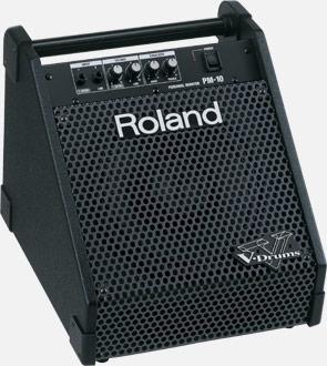 PM 10 Roland Amp
